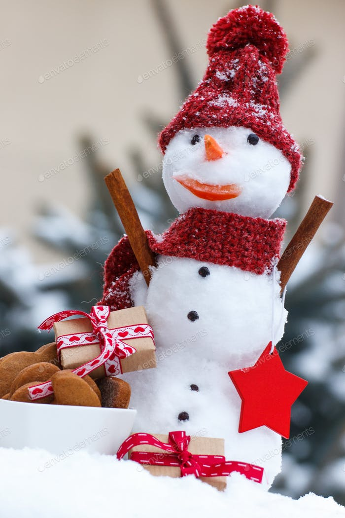 Snowman with gift for Christmas or Valentine and gingerbreads on background of coniferous tree