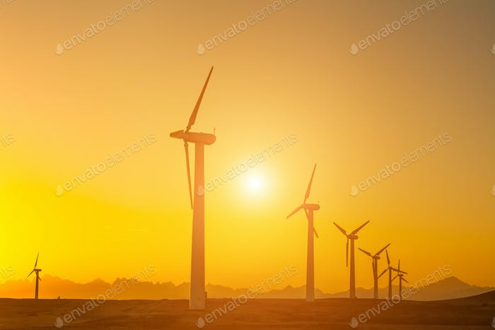 Elektrische Windturbinen Farm Silhouetten auf Sonnenhintergrund