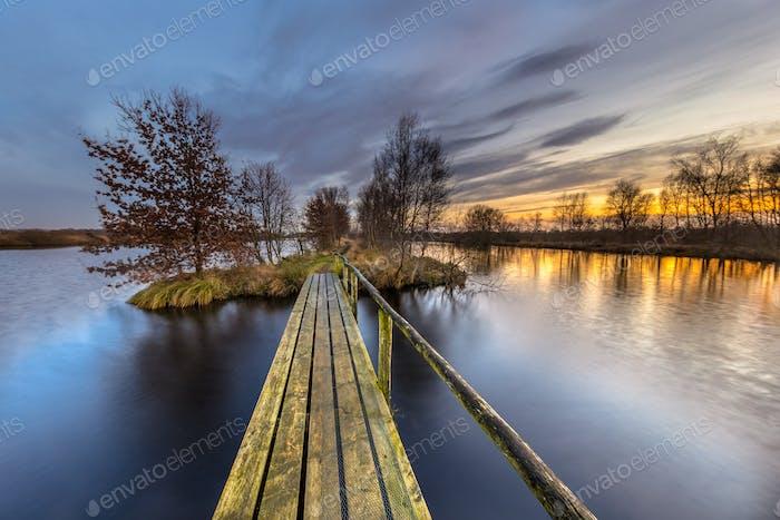 Pedestrian bridge in wetland