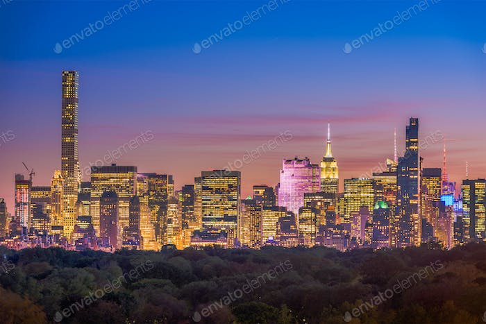 New York City Central Park Skyline