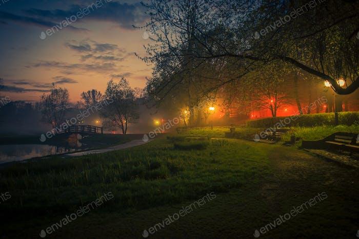 Mystery Fog in the City Park