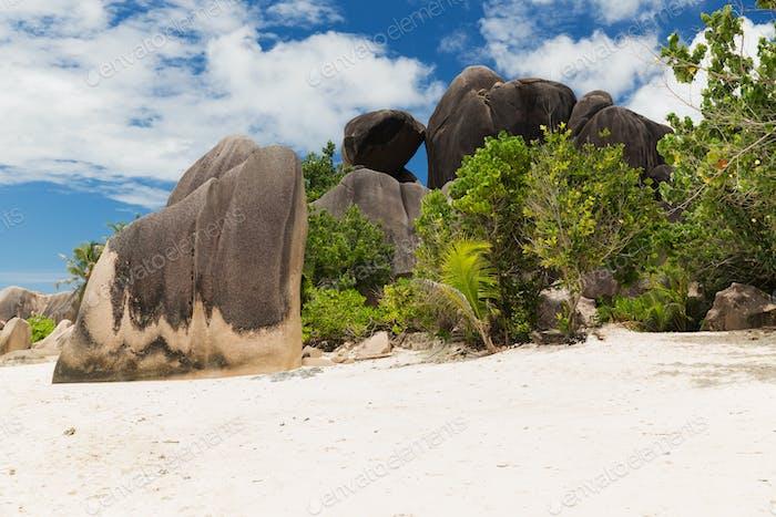 Inselstrand im Indischen Ozean auf den Seychellen