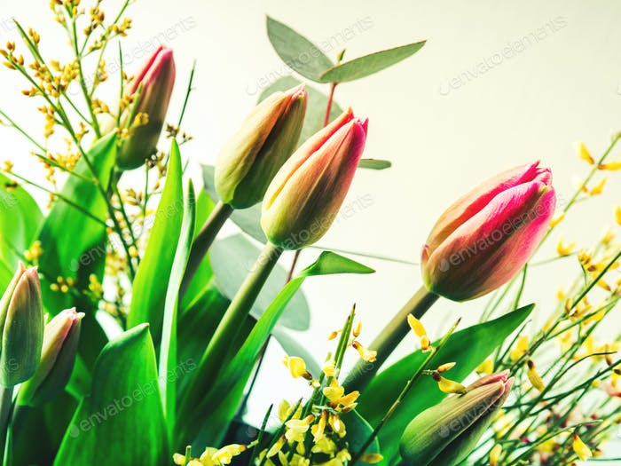Beautiful bunch of tulips on pastel background