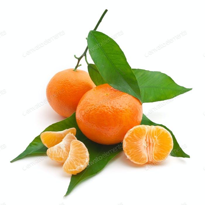 Isoalted tangerine
