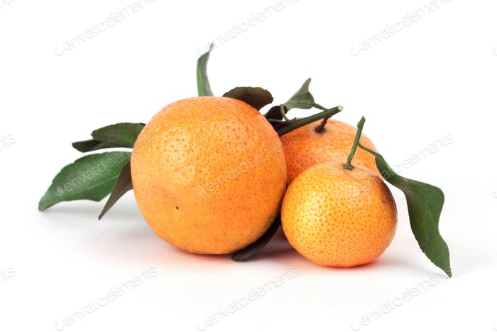 Mandarin with green leaf