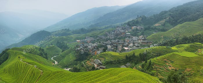 Views of green Longji terraced fields and Pingan village