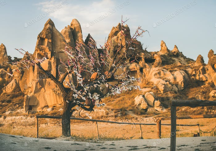 Natural volcanic rocks and tree with wish ribbons, Turkey