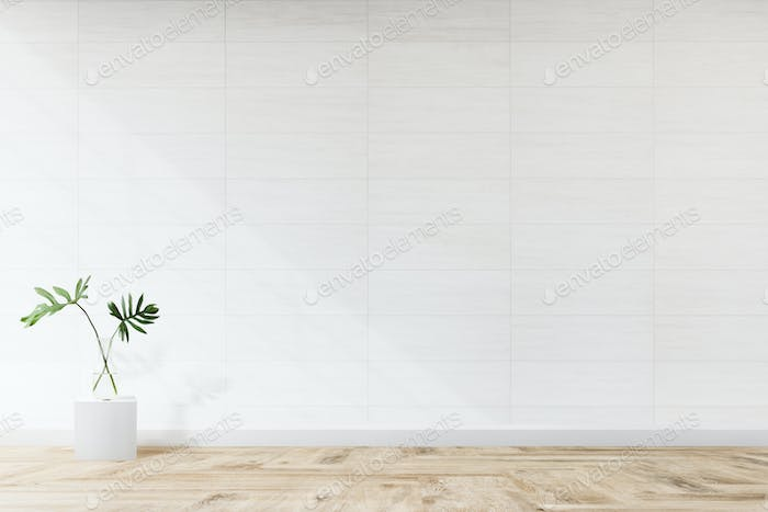 Monstera leaves in a living room