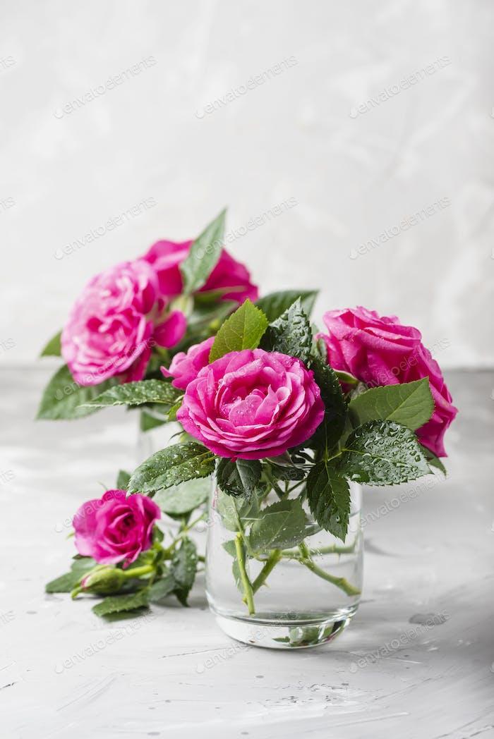 Erstaunliche wilde rosa Rosen