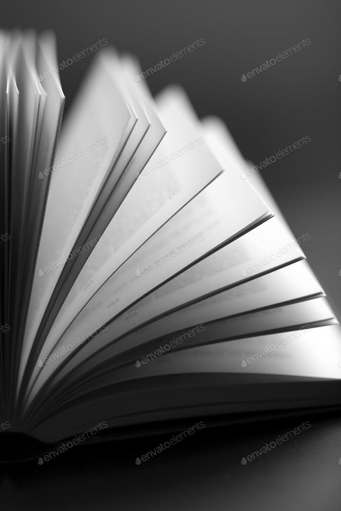 Fondo de Libro abierto Resumen