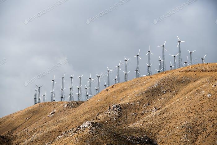 Windmühlen für die elektrische Stromerzeugung, Kalifornien, USA