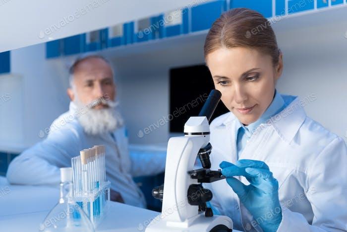 fokussierte Wissenschaftler mit Mikroskop während der Arbeit im Labor mit Kollegen hinter im Labor