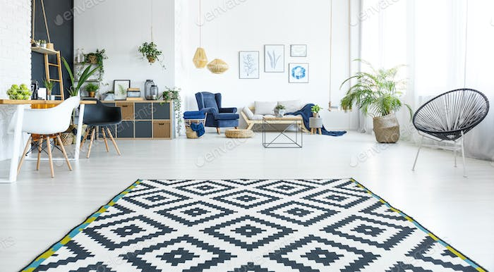 White living room with carpet