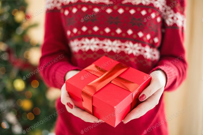 Close up of a woman offering a gift at home in the living room