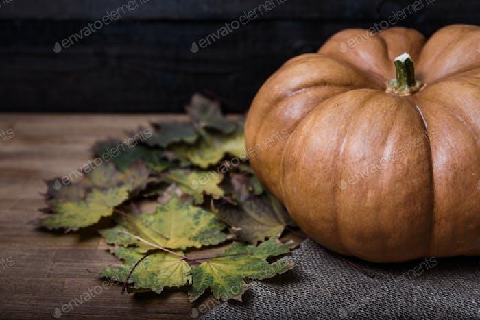 Kürbis auf einem Holztisch liegend