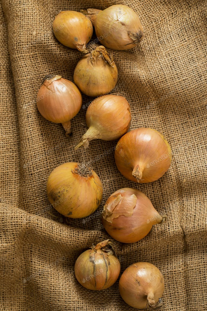 Onion on blanket