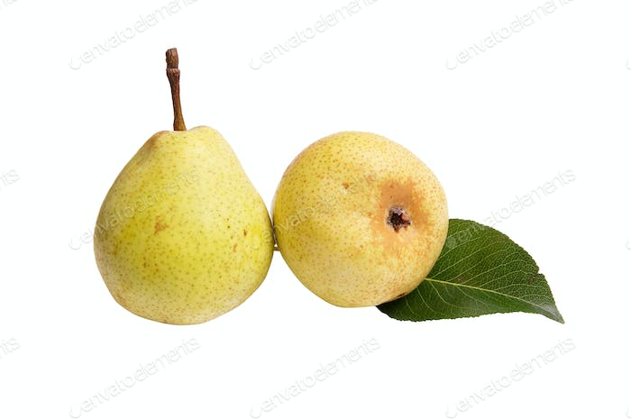 Juicy,ripe  pears on a white.