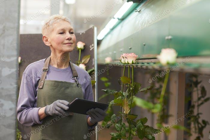Frau mit Tablet-PC in Ihre Arbeit