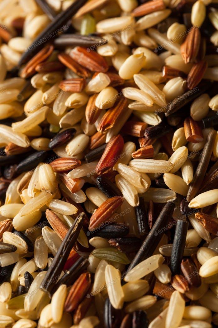 Raw Dry Organic Wild Rice