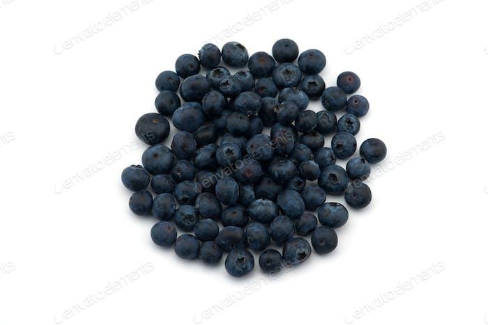 Freshly picked blueberries  isolated on white background