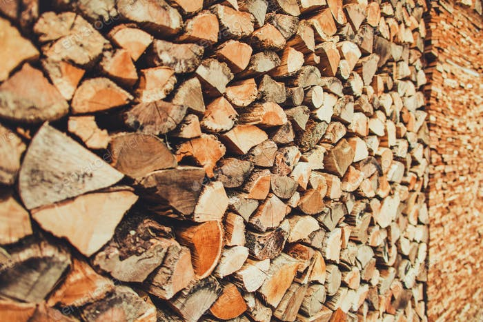 Woodshed Ready For Winter