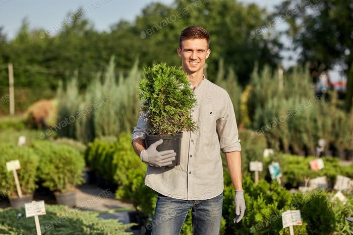 Guy gardener holds in his hand a pot with plant in the wonderful nursery-garden on a warm sunny day