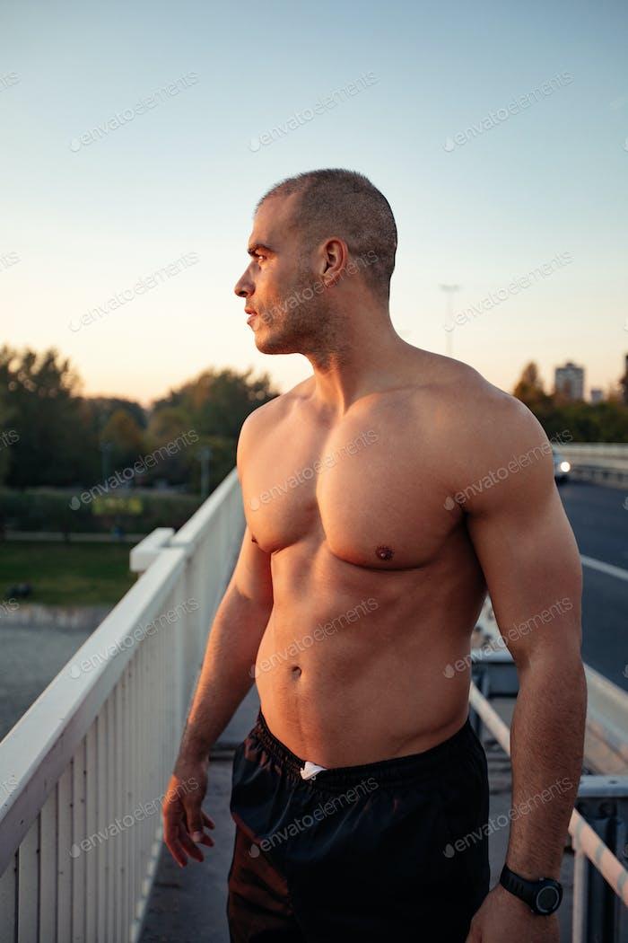 Мускулистые и мускулистые