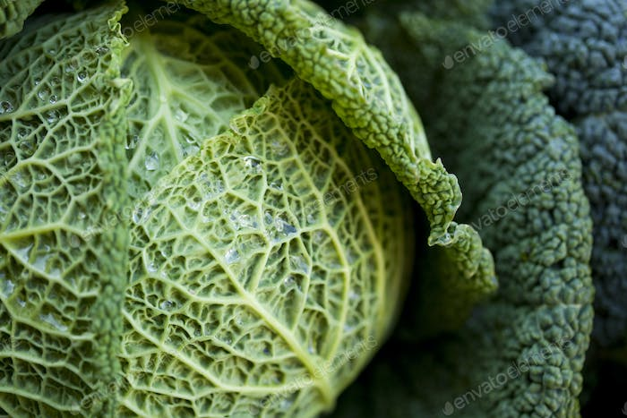 Green cabbage on a stall