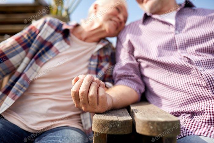 glückliches älteres Paar auf Sommerfarm