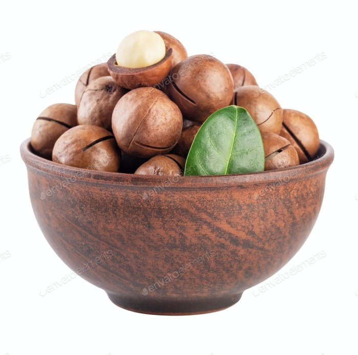 Australian macadamia nut with green leaf in brown plate