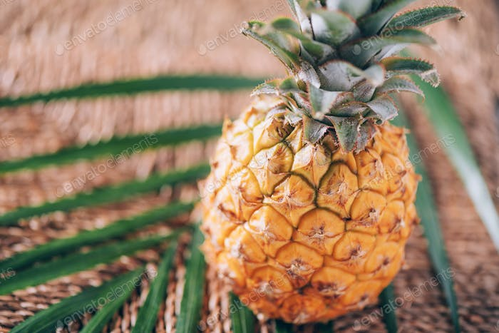 Mini pineapple with palm leaves on rattan background. Copy space. Flat lay. Exotic food, tropical