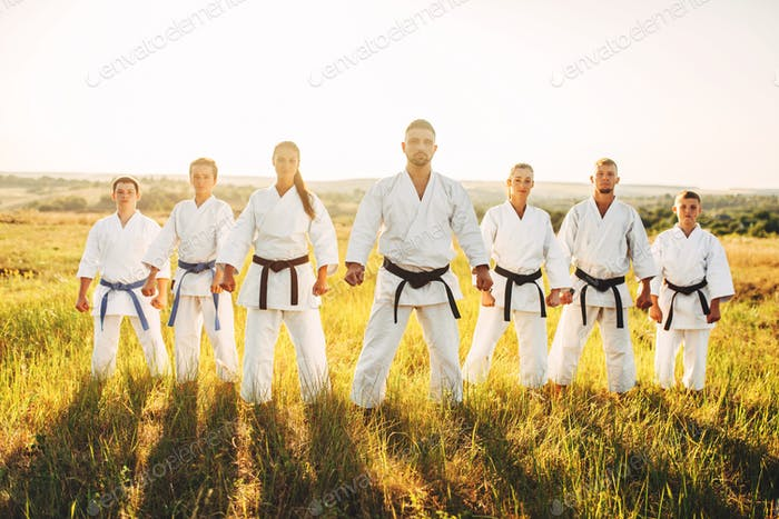 Karate group in white kimono, workout in field