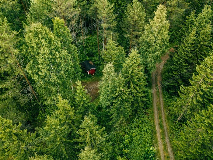Aerial view of the road through the spruce forest. red cabin in the forest in Finland