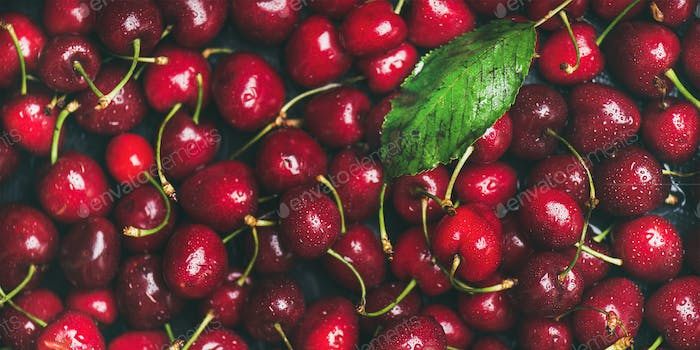 Fresh sweet cherry texture, wallpaper and background