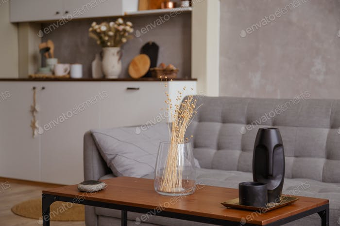 Modern apartment interior of living room with sofa coffee table