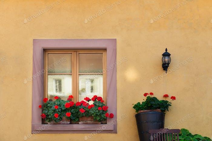 Schönes Fenster im traditionellen französischen Haus in Colmar, Elsass