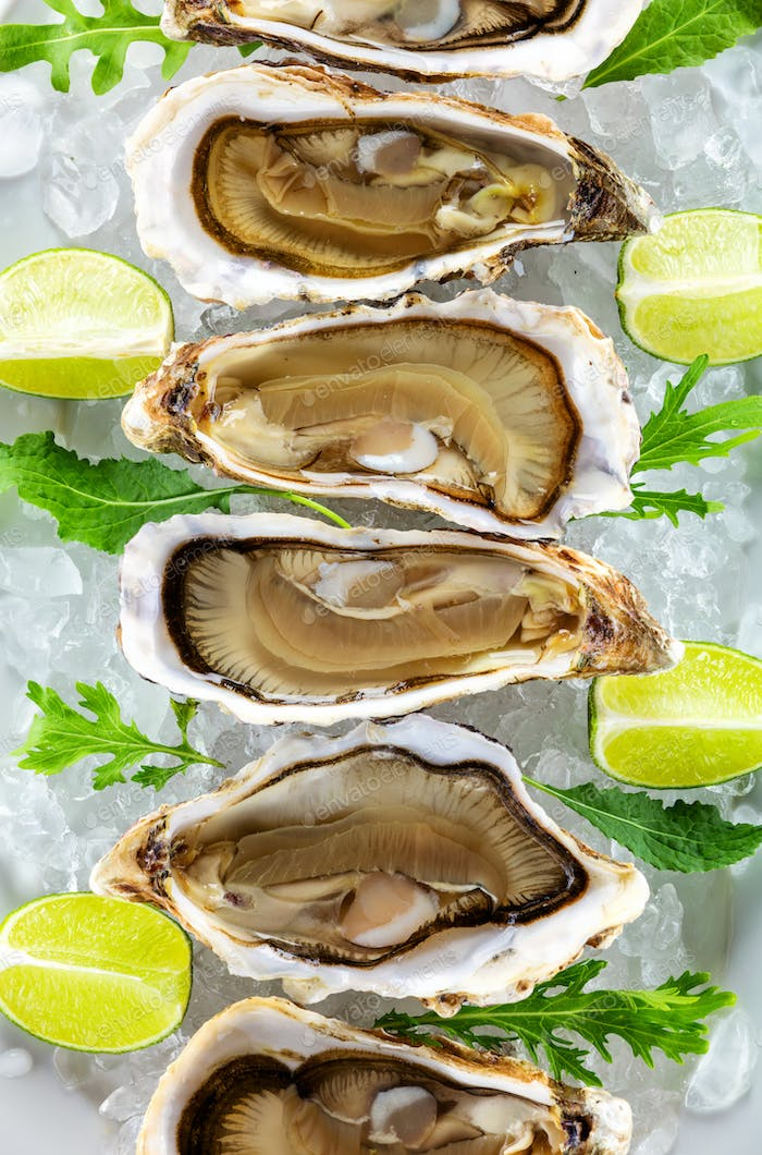 Fresh oysters on ice with pieces of lime