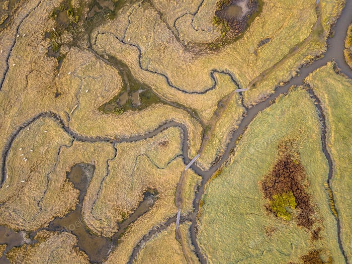 Aerial view of tidal marshland