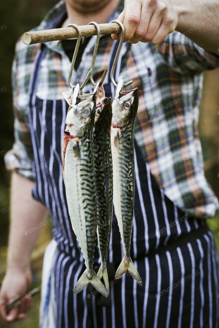 Chef holding three Mackerel hanging on hooks.