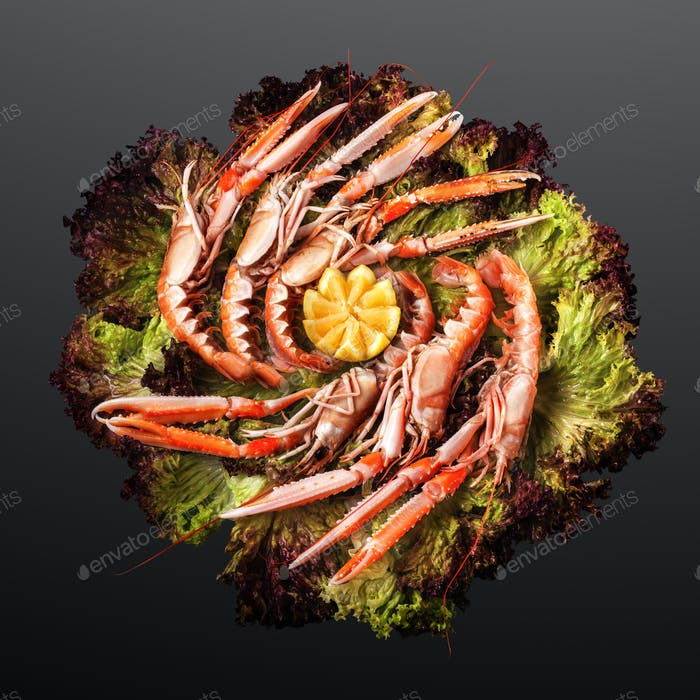 Norway lobster grilled.