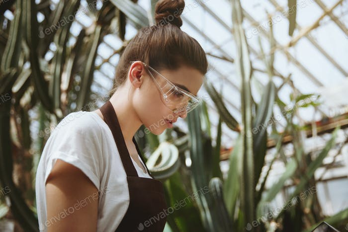 Serious young woman sitting in greenhouse using laptop