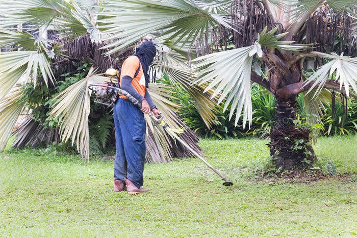 Worker with protective clothing cutting grass with grass cutter