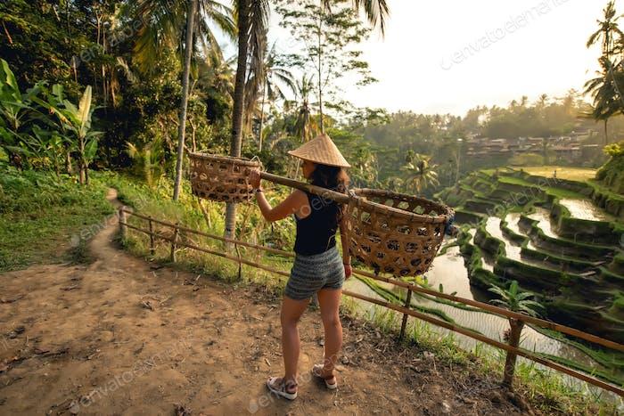 Junge Arbeiter auf Reisfeld herumtragen. Landwirtschaftliche Details auf Reisterrassen