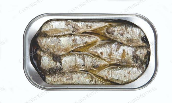 Canned sardines in vegetable oil open isolated on a white background