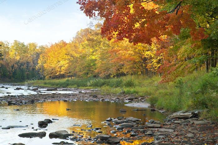 Fluss mit Felsen in der Nähe von Bäumen in Herbstfarbe auf der oberen Halbinsel im Norden Michigans