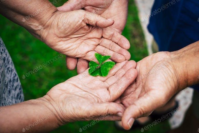 Manos viejas personas sosteniendo con amor