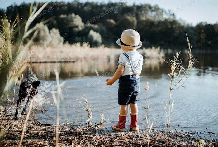 A rear view of small toddler boy with a dog standing by a lake.