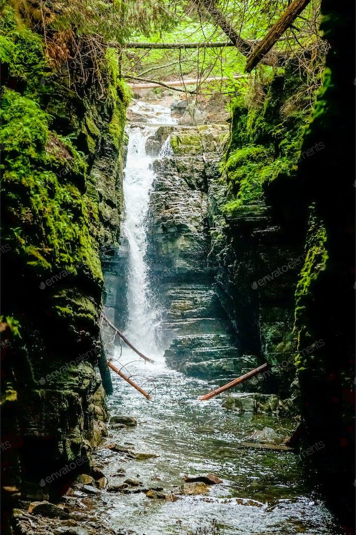 Beautiful Waterfall in the Wild Nature