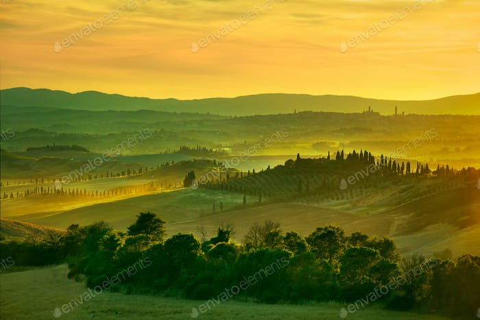 Siena, rolling hills on sunset. Rural landscape with cypress tre