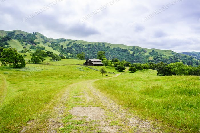 Trail in Sunol Regional Wilderness, east San Francisco bay area, California